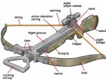 Crossbow Information